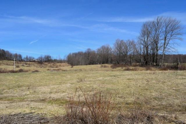 0 Miller Road West Road, Florence, NY 13316 (MLS #S1164656) :: MyTown Realty