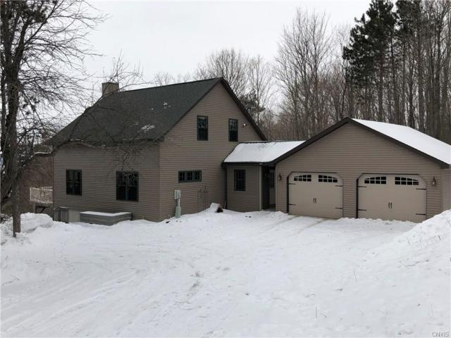 7325 Mason Road, Hamilton, NY 13346 (MLS #S1172870) :: Robert PiazzaPalotto Sold Team