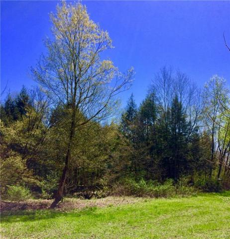 8972 State Route 365, Floyd, NY 13476 (MLS #S1192186) :: Updegraff Group