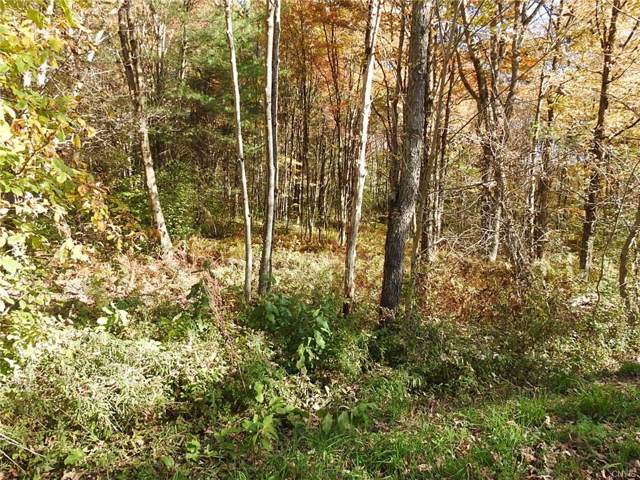 00 Creek Road #2, Annsville, NY 13471 (MLS #S1214729) :: MyTown Realty