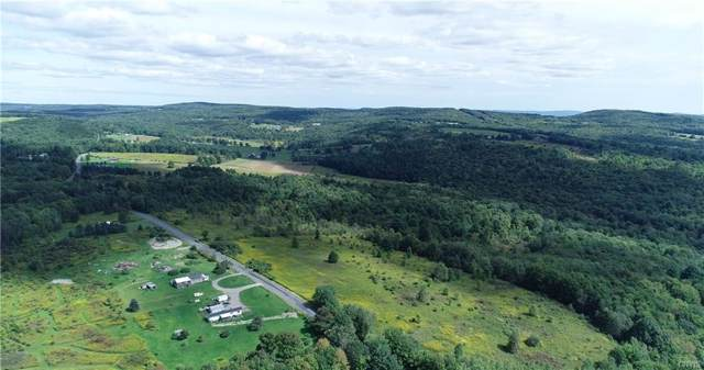 116 acres Shafer Road Tn 1 Road, Greene, NY 13778 (MLS #S1221836) :: MyTown Realty