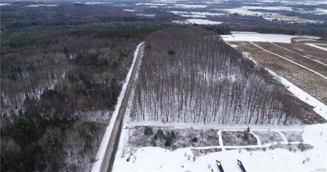 Lot C Chicken Coop Road, Hector, NY 14886 (MLS #S1237120) :: Robert PiazzaPalotto Sold Team