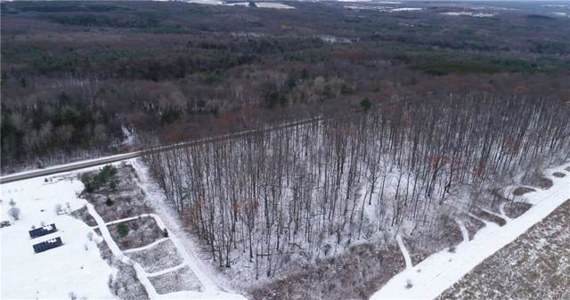 Lot D Chicken Coop Road, Hector, NY 14886 (MLS #S1237125) :: Robert PiazzaPalotto Sold Team
