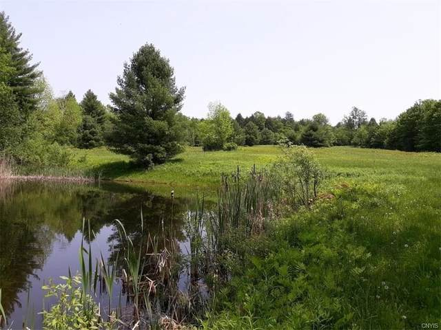 48 Acres E Belden Corners Road, Oppenheim, NY 13452 (MLS #S1245012) :: Robert PiazzaPalotto Sold Team