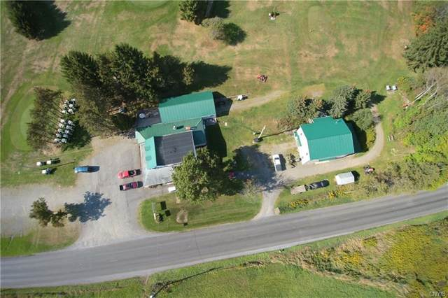 3635 State Route 80, Sherburne, NY 13460 (MLS #S1251151) :: Updegraff Group
