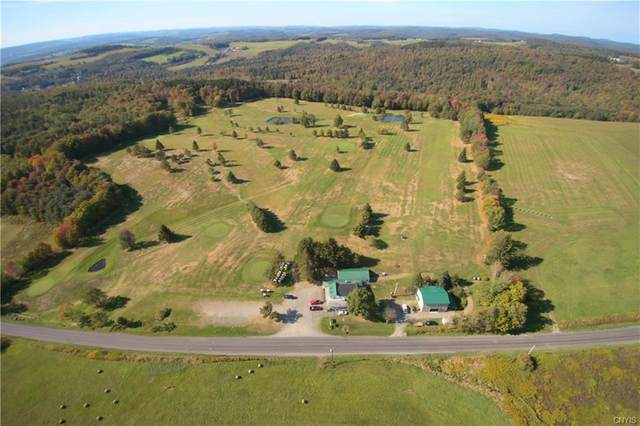 3635 State Route 80, Sherburne, NY 13460 (MLS #S1251223) :: Updegraff Group