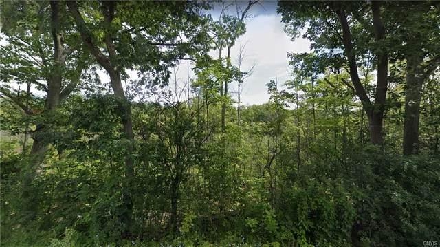 0 Ridge Road, Glenville, NY 12302 (MLS #S1253632) :: Robert PiazzaPalotto Sold Team