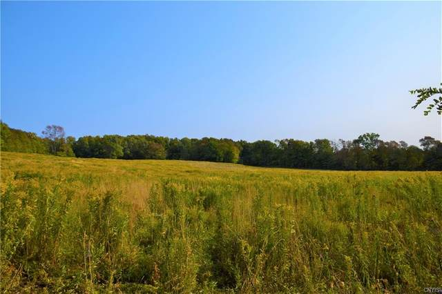 Lot 5 Skaneateles Turnpike, Plainfield, NY 13491 (MLS #S1277387) :: TLC Real Estate LLC