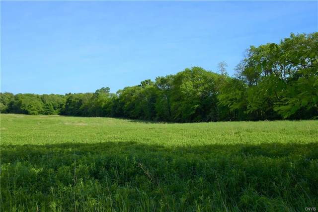 Lot 6 Skaneateles Turnpike, Plainfield, NY 13491 (MLS #S1277399) :: TLC Real Estate LLC