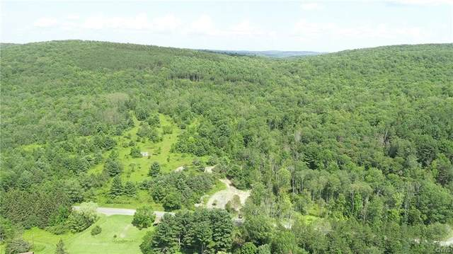 230 acres Dean Creek Road, Spencer, NY 14883 (MLS #S1346092) :: Serota Real Estate LLC