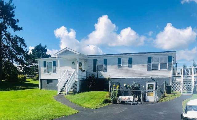 24485 County Route 53, Brownville, NY 13601 (MLS #S1365055) :: BridgeView Real Estate