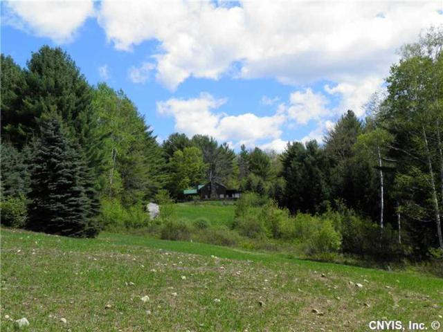 0 New Vermont Road, Bolton, NY 12814 (MLS #S358598) :: Thousand Islands Realty