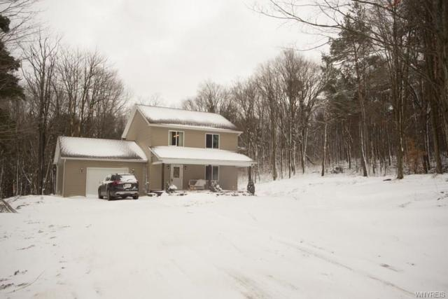 8556 Rohr Hill Road, East Otto, NY 14729 (MLS #B1023333) :: The Rich McCarron Team