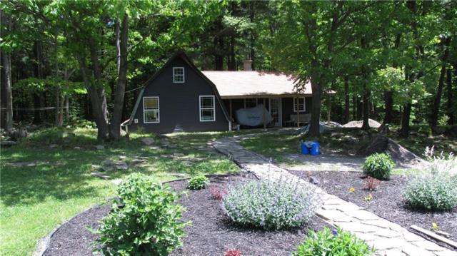1185 Ohargan Road, Greenwood, NY 14839 (MLS #R1194456) :: Thousand Islands Realty