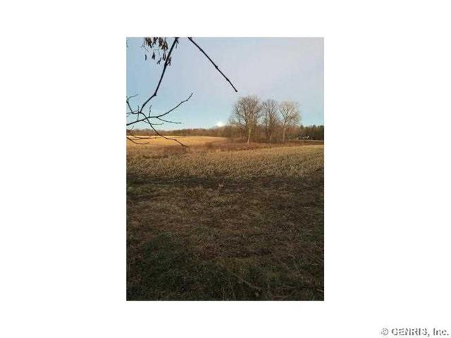 0 Oil Well Hollow Rd. S, Cohocton, NY 14826 (MLS #R291513) :: The Chip Hodgkins Team