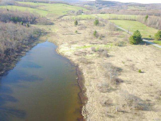 Lot A Chapin Road, Georgetown, NY 13072 (MLS #S1111824) :: Thousand Islands Realty