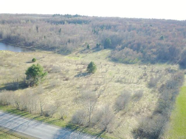 Lot B Chapin Road, Georgetown, NY 13072 (MLS #S1112013) :: Thousand Islands Realty