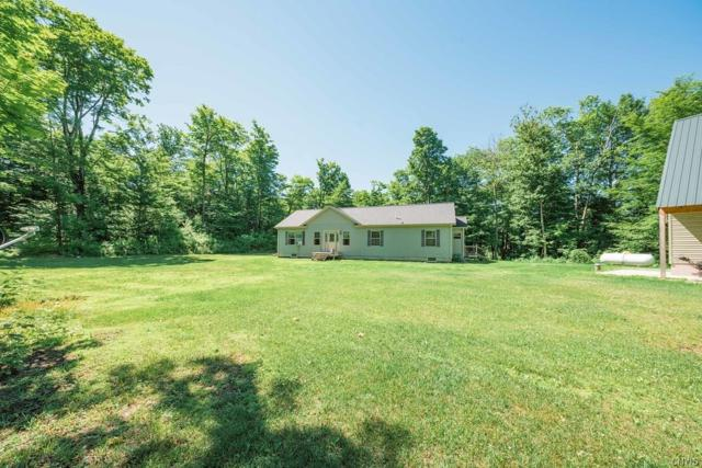3602 Townline Road, Worth, NY 13659 (MLS #S1127818) :: Thousand Islands Realty