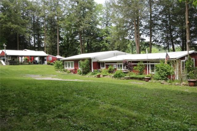 315 State Route 26, Willet, NY 13863 (MLS #S1192790) :: 716 Realty Group