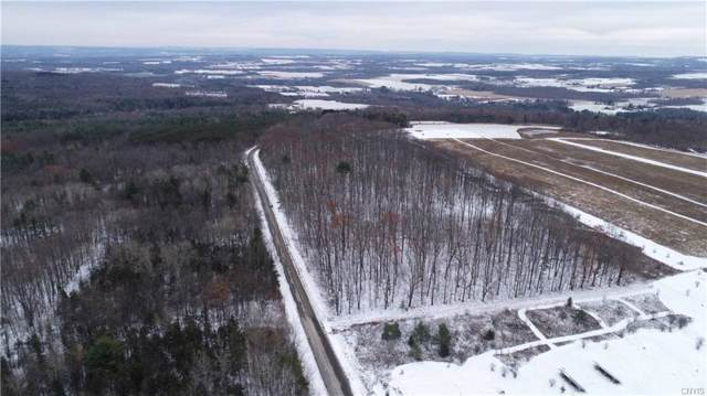 Lot D Chicken Coop Road, Hector, NY 14886 (MLS #S1237125) :: Updegraff Group