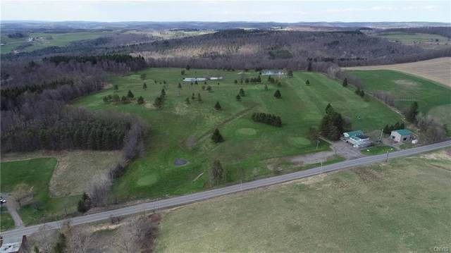 3635 State Route 80, Sherburne, NY 13460 (MLS #S1251223) :: Robert PiazzaPalotto Sold Team