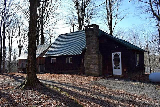 925 County Route 2, Orwell, NY 13144 (MLS #S1308127) :: TLC Real Estate LLC