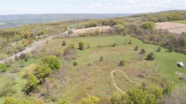 20 acres Cherry Valley, Onondaga, NY 13110 (MLS #S1336231) :: MyTown Realty