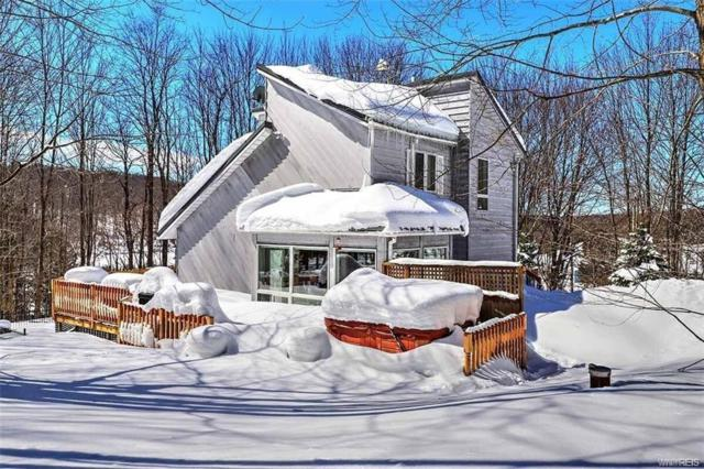 8246 Rohr Hill Road, East Otto, NY 14729 (MLS #B1103522) :: Robert PiazzaPalotto Sold Team