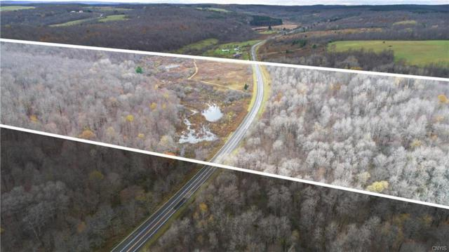 80 Acres County Road 24, Columbus, NY 13460 (MLS #S1157957) :: Thousand Islands Realty