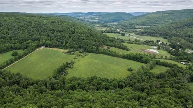 5135 Purdy Creek Road, Hartsville, NY 14843 (MLS #S1199610) :: MyTown Realty