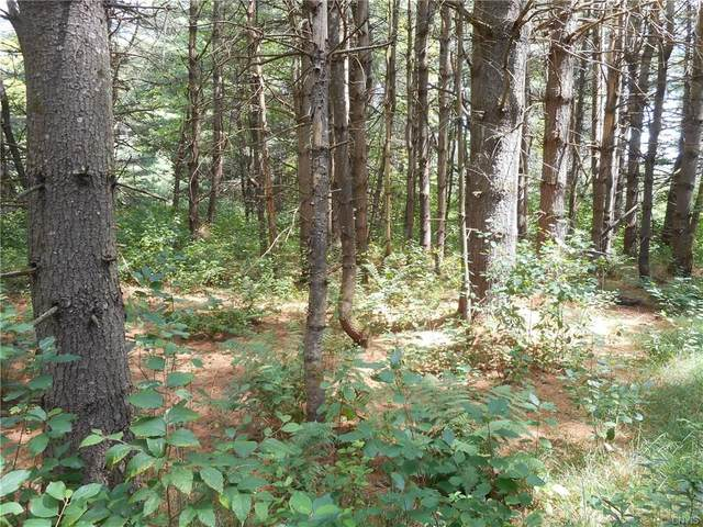 00 Creek Road #2, Annsville, NY 13471 (MLS #S1214729) :: 716 Realty Group
