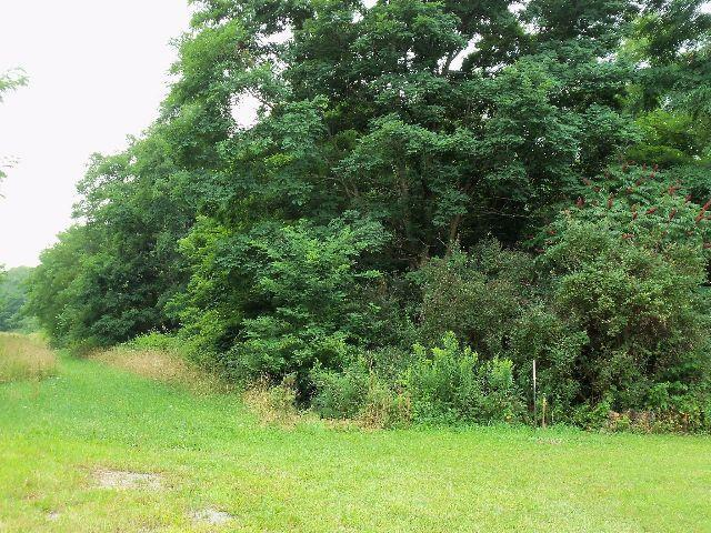 000 Villa Drive, Westfield, NY 14787 (MLS #1043826) :: Lore Real Estate Services