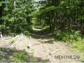 0 State Route 168, Stark, NY 99999 (MLS #1302469) :: Thousand Islands Realty