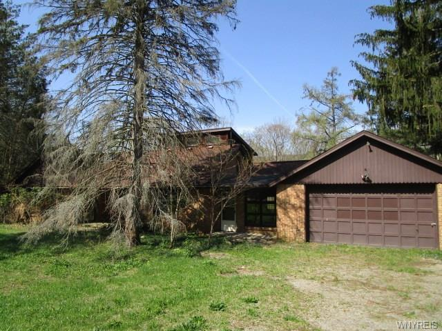 7852 State Road, Colden, NY 14033 (MLS #B1117005) :: Updegraff Group