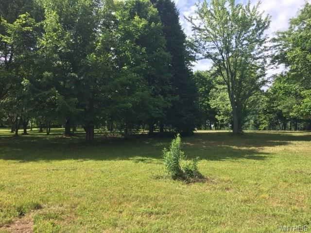 VL Hopkins Road, Pembroke, NY 14036 (MLS #B1130937) :: Updegraff Group