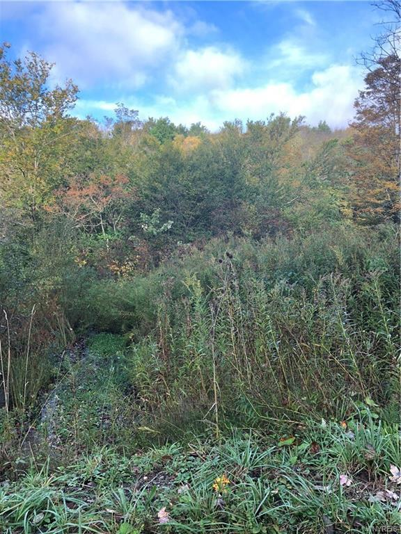 Lot 4 Plum Brook Road, Great Valley, NY 14741 (MLS #B1151452) :: The Rich McCarron Team
