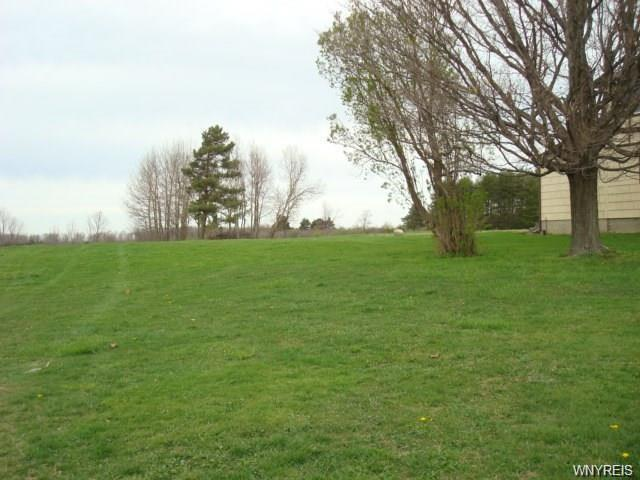 7894 Milestrip Road, Orchard Park, NY 14127 (MLS #B1160444) :: BridgeView Real Estate Services