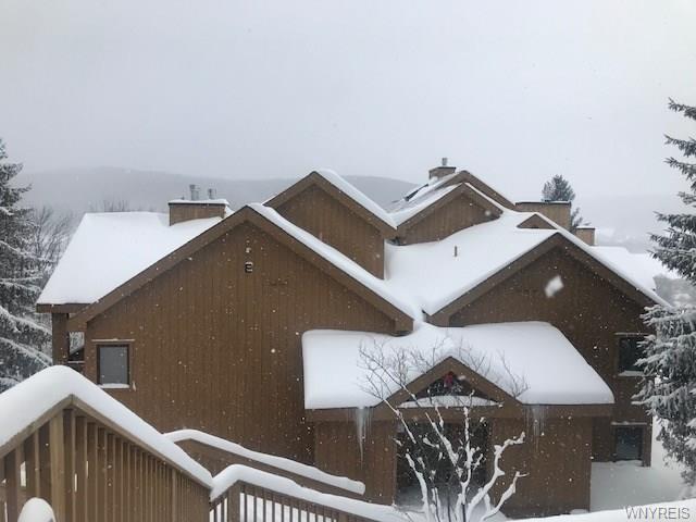 D304 Snowpine Village 5915, Great Valley, NY 14741 (MLS #B1174539) :: The Chip Hodgkins Team
