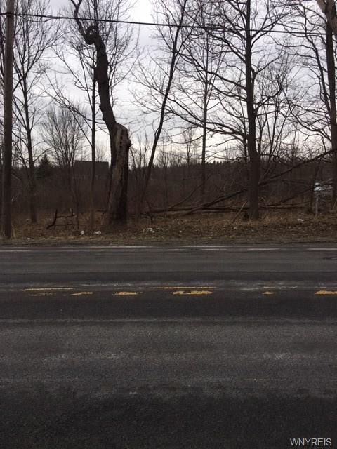 VL Big Tree Road, Aurora, NY 14052 (MLS #B1181317) :: BridgeView Real Estate Services