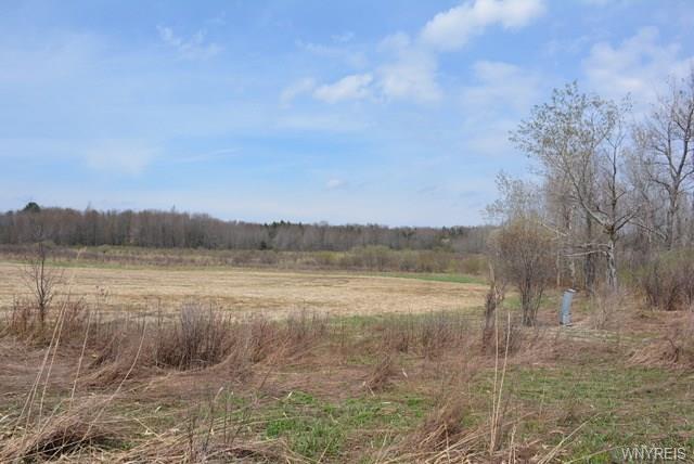 0 4 Springville Gowanda Rt 39 Highway, Concord, NY 14141 (MLS #B1190354) :: Updegraff Group