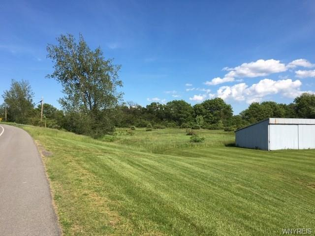 vl W Lake Road S, Newfane, NY 14126 (MLS #B1199728) :: The Rich McCarron Team