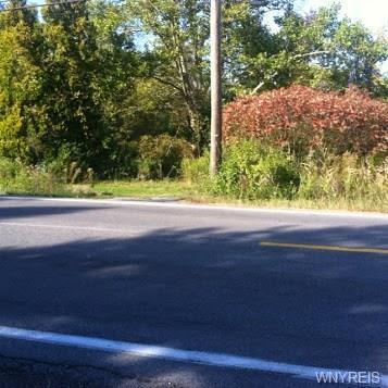 4876 William Street, Lancaster, NY 14086 (MLS #B1200860) :: MyTown Realty