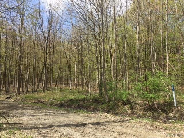 VL Abbott Hill Road Extension, Concord, NY 14141 (MLS #B1204522) :: Updegraff Group