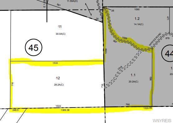 0 Co Road 38, Alma, NY 14708 (MLS #B1225098) :: The CJ Lore Team | RE/MAX Hometown Choice