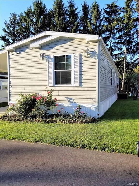 10 Samuel Drive, Cheektowaga, NY 14225 (MLS #B1226533) :: MyTown Realty