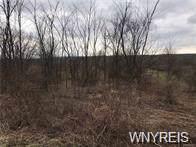 V/L Gowanda State Road, North Collins, NY 14111 (MLS #B1231917) :: Updegraff Group