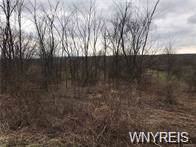 V/L Gowanda State Road, North Collins, NY 14111 (MLS #B1231927) :: Updegraff Group
