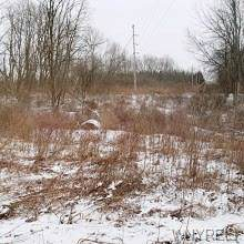 VL Big Tree Road, Aurora, NY 14052 (MLS #B1245109) :: BridgeView Real Estate Services