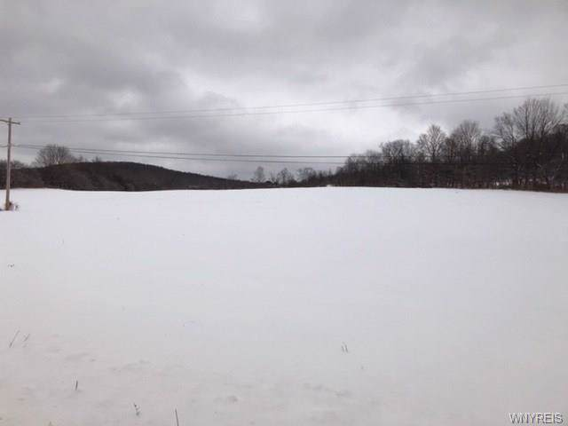 VL Nys Route 242, Franklinville, NY 14737 (MLS #B1248622) :: MyTown Realty