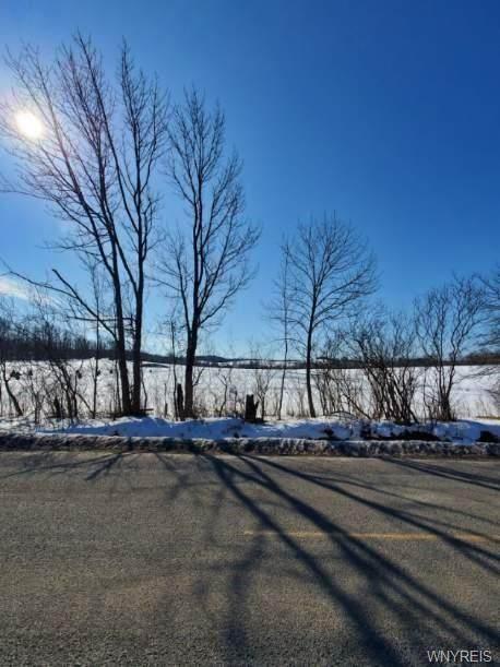 1245 Emery Road, Aurora, NY 14052 (MLS #B1253365) :: Updegraff Group